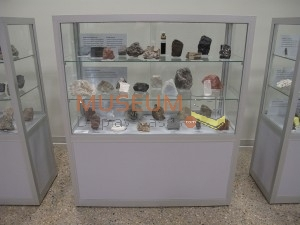 Museum Display Cases Small 174 - small