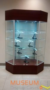 Gallery Display Cabinets